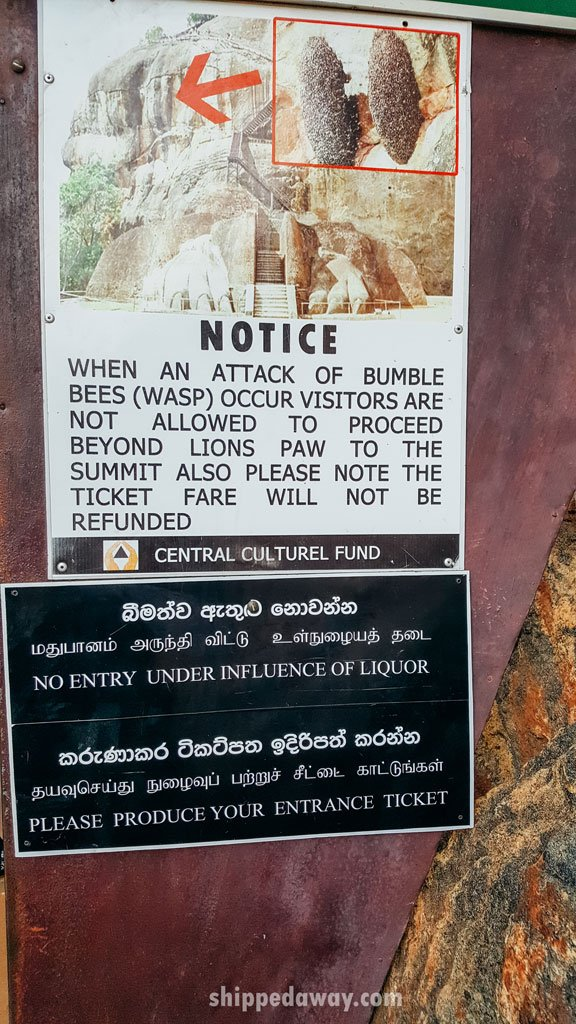 Wasp sign, Sigiriya