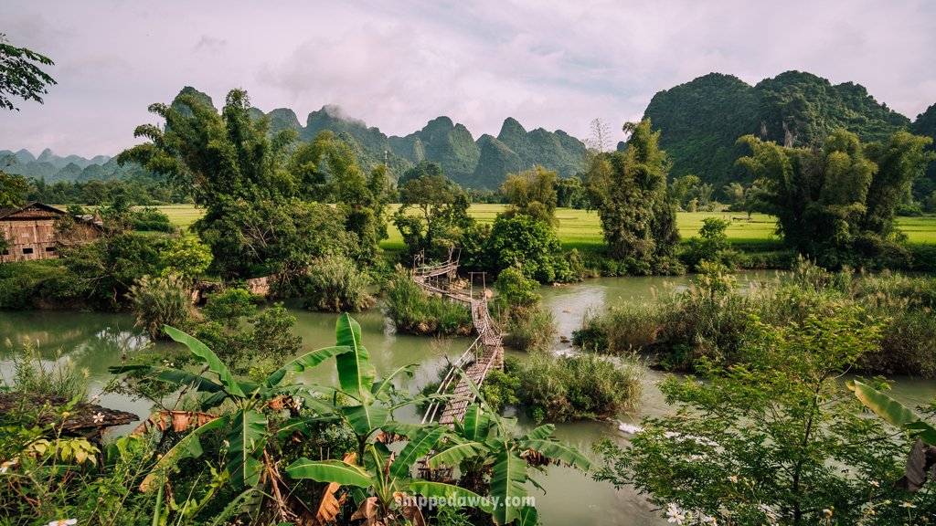 Wooden bridge above Quay Son river surrounded by green rice fields and forest in Ban Gioc area