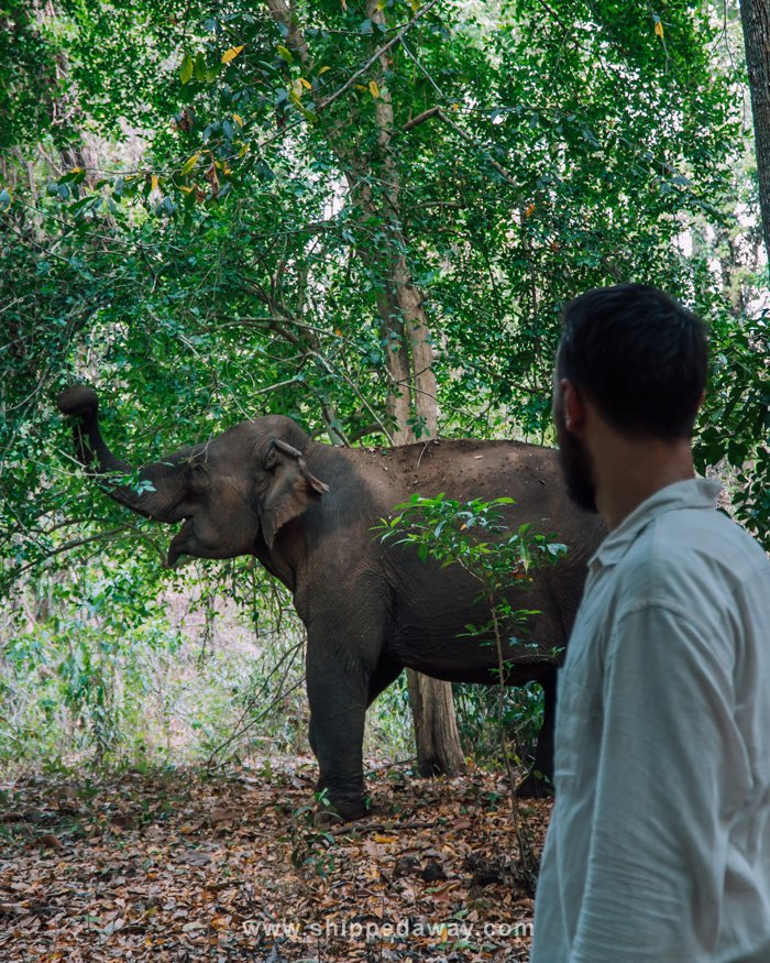 Matej Špan at ethical elephant experience in Yok Don National Park in Vietnam